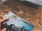 Annabella Diamond Hotel.